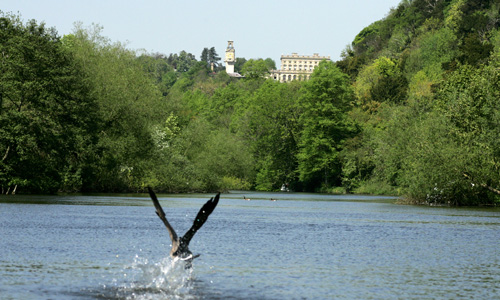 Cliveden from the river