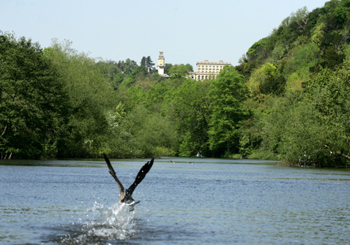 Vintage-Days-Out-Cliveden-river-view-500x350